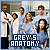 TV Shows: Grey's Anatomy